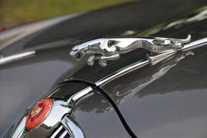 Jaguar Ankauf